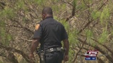 Decomposed body found in McAllister Park