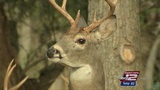 Texas House committee updated on CWD response at meeting in Hondo