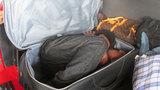Border Patrol agents find man hiding in suitcase