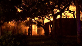 Fire destroys NW Bexar County home
