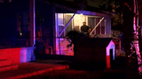 Woman shot asleep in home