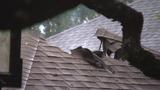 Lightning strikes 3 homes in North San Antonio subdivision