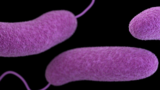 Man infected with flesh-eating bacteria during Texas beach trip fighting&hellip&#x3b;