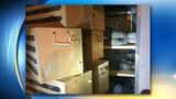 11 people found behind boxes filled with roosters, officials say
