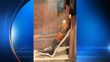 Students head to Illinois to ask for return of Santa Anna's fake leg to Mexico
