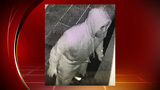 Crime Stoppers seek info on suspect in burglary