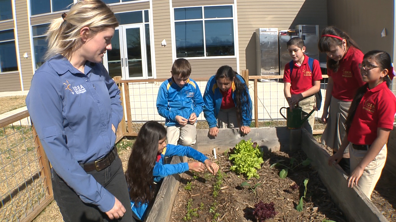 Idea Students Harvest Healthy Vegetables Learn About
