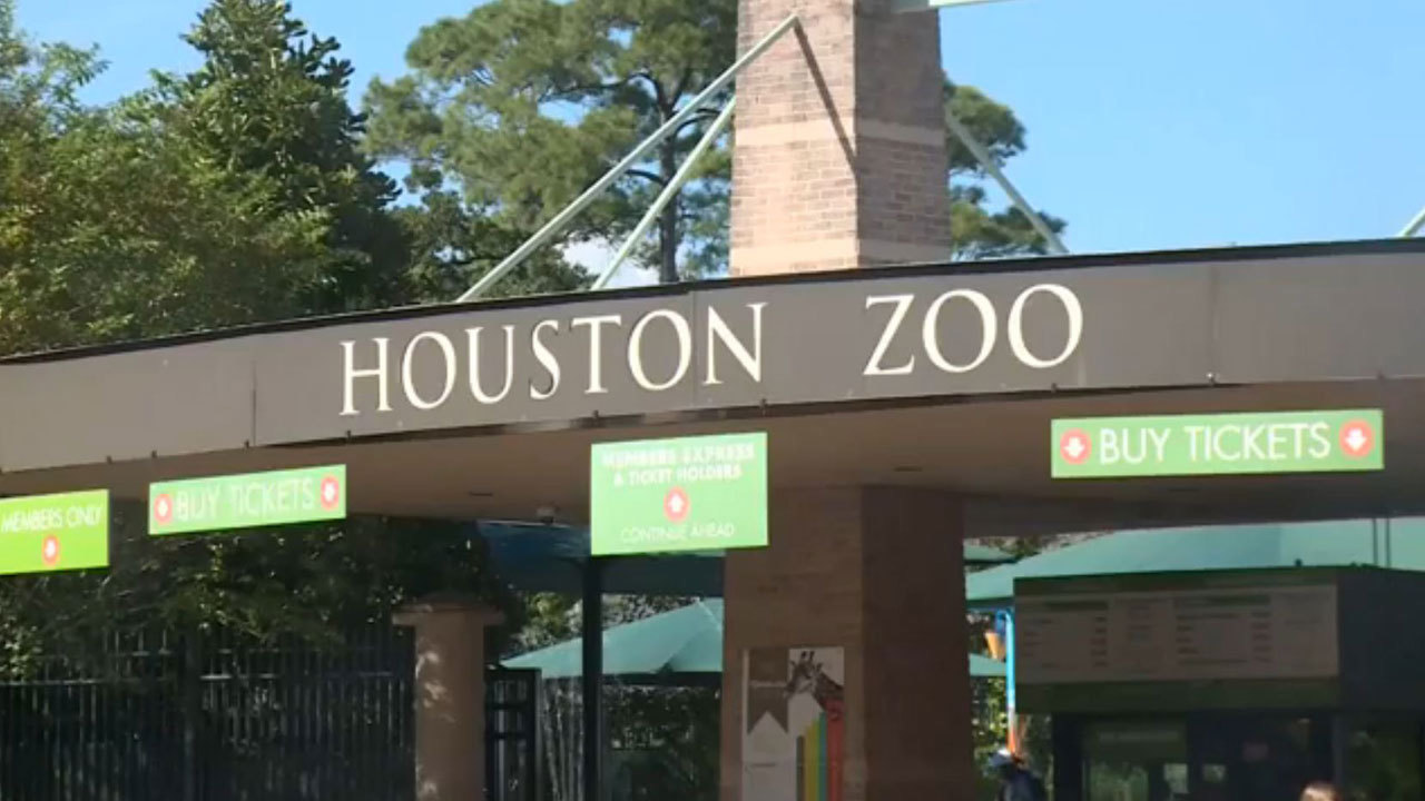 Dec 03, · -The Houston Zoo offers reciprocity to members of participating institutions up to a maximum of 2 adults and 3 children. -This list and associated discounts are .