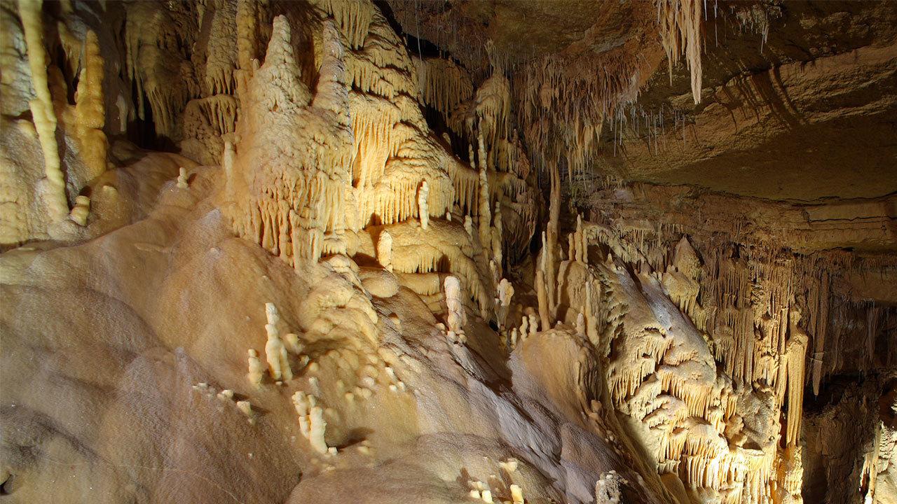 Sa Live Big Adventure Heads To Natural Bridge Caverns