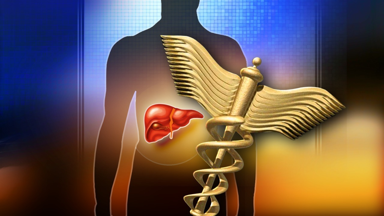 New Initiative Aimed At Prevention Early Detection Of Liver