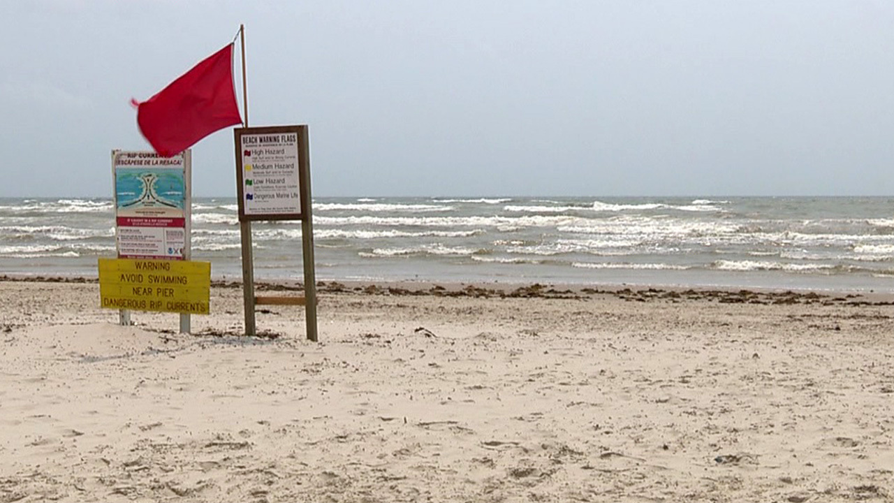 High levels of fecal bacteria reported along Texas coast