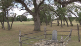 Historic tree marks unsolved crime dating back to Civil War