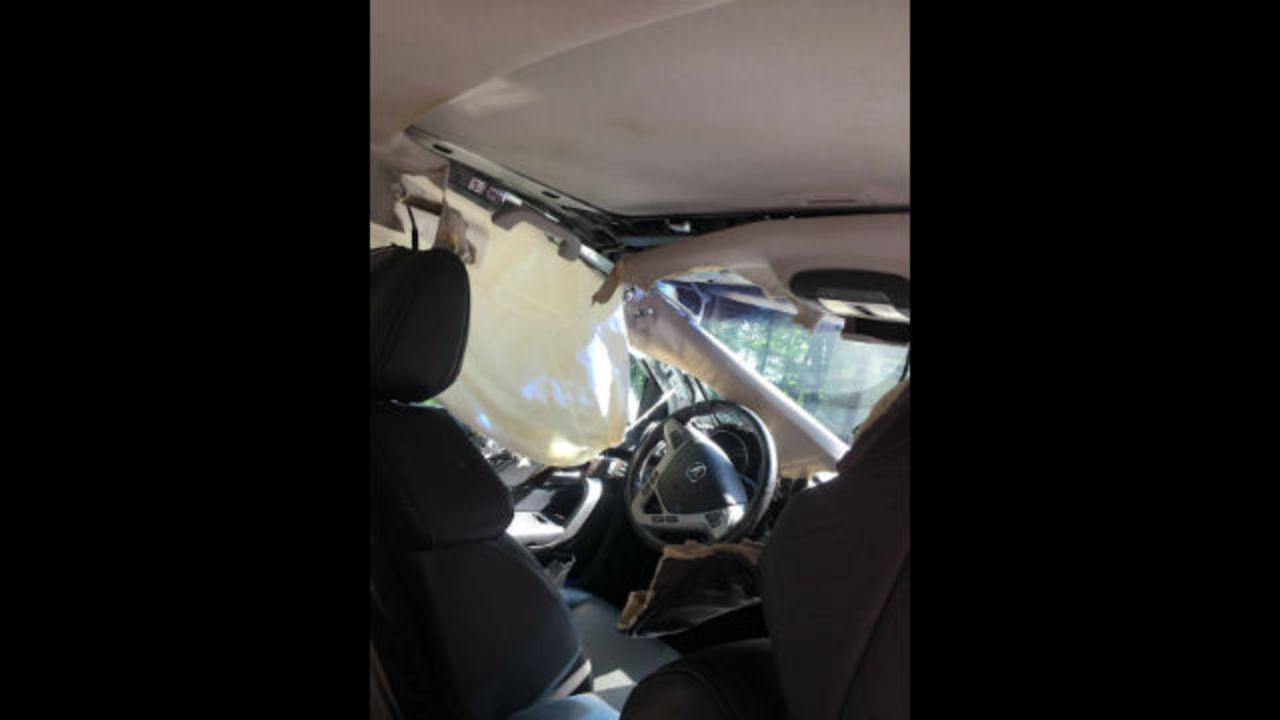 video bear trapped in car tears it apart. Black Bedroom Furniture Sets. Home Design Ideas