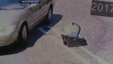 CAUGHT ON CAMERA: Dad abandons 2-week-old baby in parking lot of strip mall