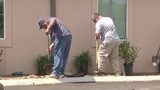 New plants put in ground after thieves took plants from Roy Maas&hellip&#x3b;