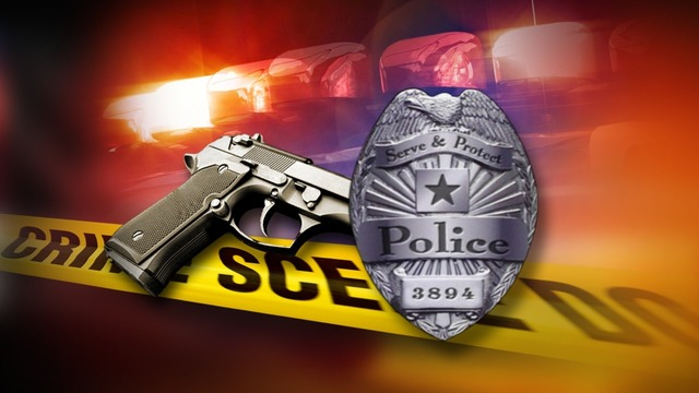 Texas police officer accidentally kills woman while shooting at dog