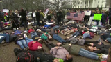 Marches, walkouts and sit-ins: Gun control battle heads to the street
