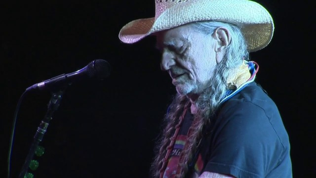 willie video Gay nelson