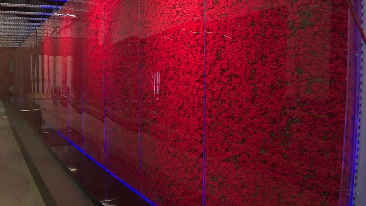 USAA brings Poppy Memorial to nation's capital for Memorial