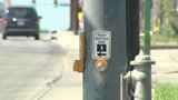 Councilwoman stresses importance of vehicle, pedestrian laws after&hellip&#x3b;