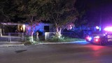 Woman shot in head after man shoots through kitchen window, police say