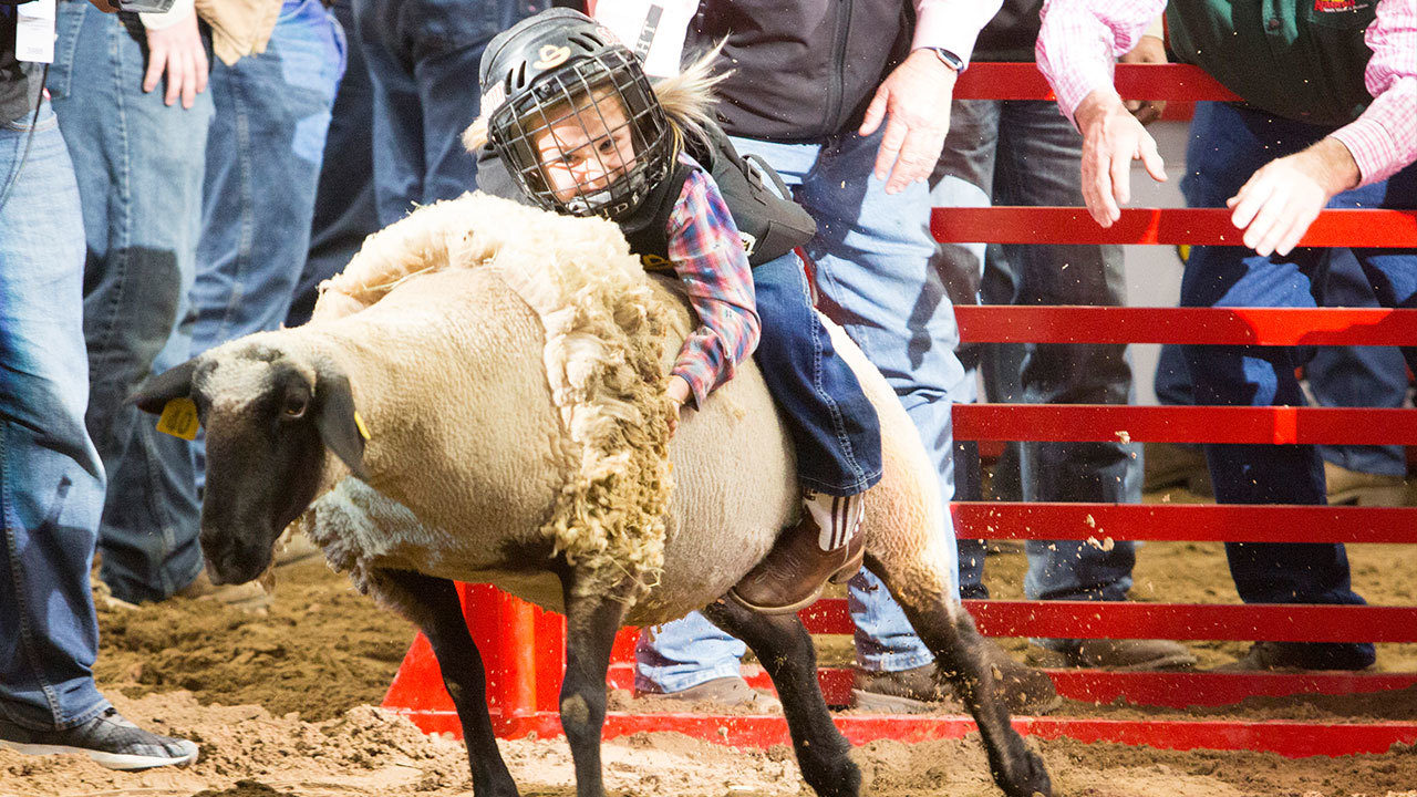 Registration For 2019 Sa Rodeo Mutton Bustin Begins Saturday