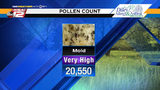 The fungus among us: High mold count causing headaches, sneezing