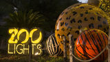 Locals get 50 percent off admission to Zoo Lights on Tuesday