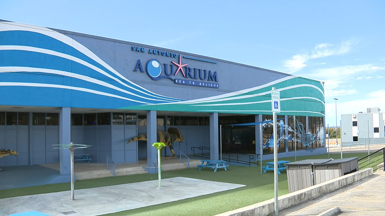 Officials shut down San Antonio Aquarium citing number of...