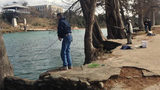 2,400 rainbow trout to be stocked at Louise Hays Park
