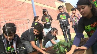 Price Elementary students learn growing techniques to conquer hunger