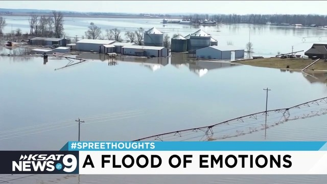 'Spree Thoughts': A Flood of Emotions