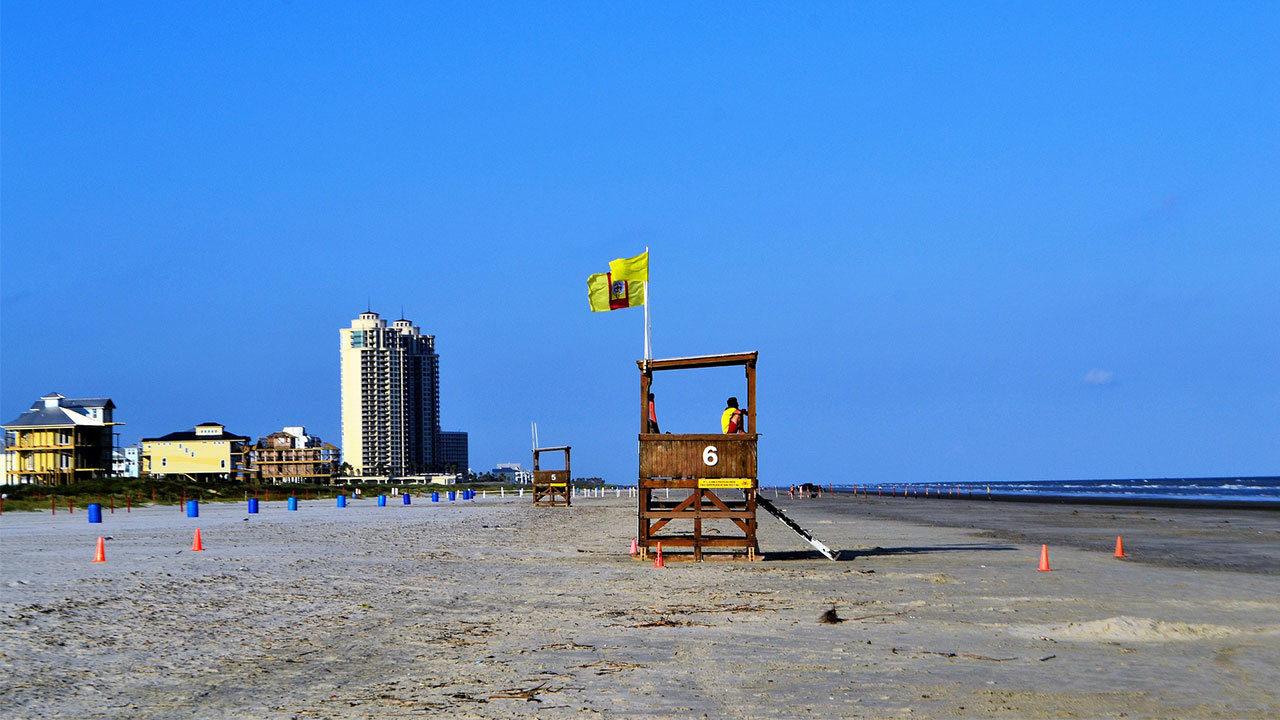 Hundreds of dead animals found on Galveston beach