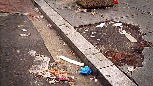 Texas snitch line: Report a litterer