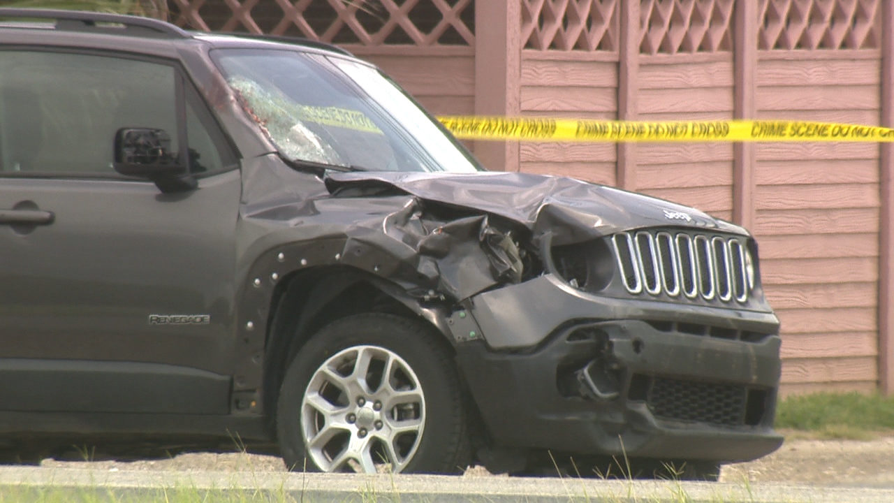 Bicyclist hit, killed by SUV while trying to cross Highway