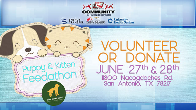Animal Defense League of Texas to hold second annual Puppy & Kitten Feedathon