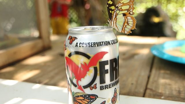 SA Zoo, Freetail release new can design for third edition of Conserveza beer