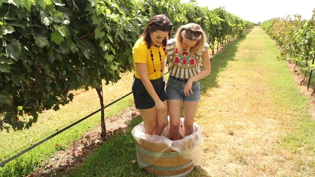 Get grape stomping at Becker Vineyards
