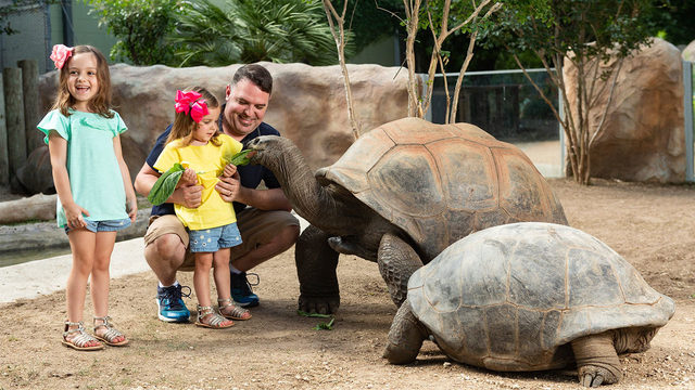 Free admission at San Antonio Zoo for first responders in September