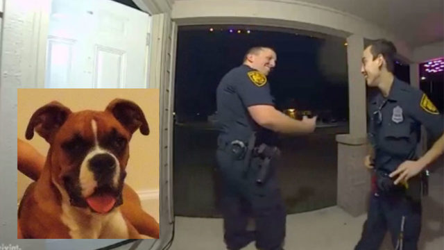 VIDEO: SAPD officers respond after dog unlocks door, sets off alarm